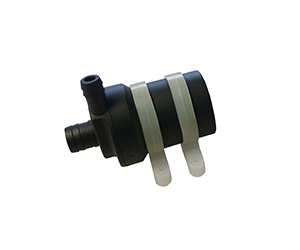 Brushless pump