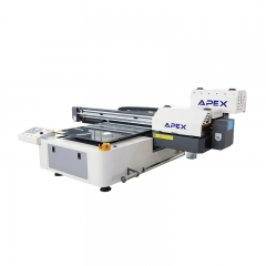 Digital UV Flatbed Printer UV6090B (2pcs DX5 Heads)-Old Version